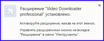 Video Downloader Professional установился